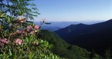 pink-mountains-1024x683